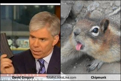 David Gregory Totally Looks Like Chipmunk