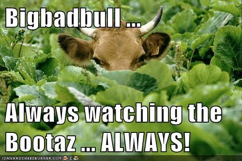 Bigbadbull ...  Always watching the Bootaz ... ALWAYS!