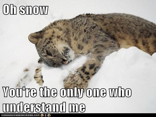 Oh snow  You're the only one who understand me