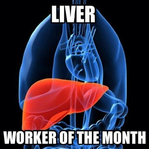 liver,worker of the month,busy,after 12,g rated