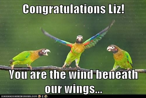 Congratulations Liz!  You are the wind beneath our wings...