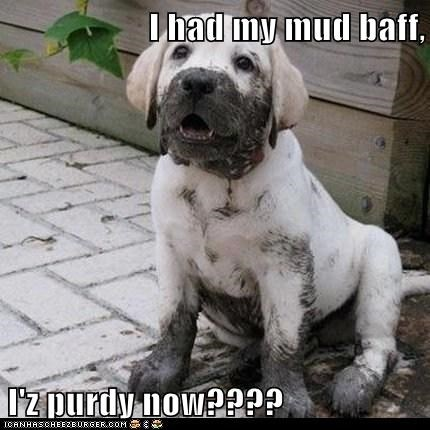 I had my mud baff,  I'z purdy now????