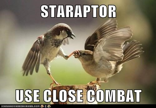 STARAPTOR  USE CLOSE COMBAT