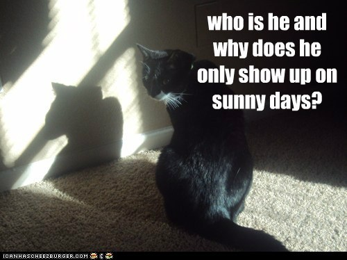 who is he and why does he only show up on sunny days?