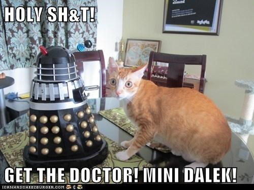 HOLY SH&T!  GET THE DOCTOR! MINI DALEK!