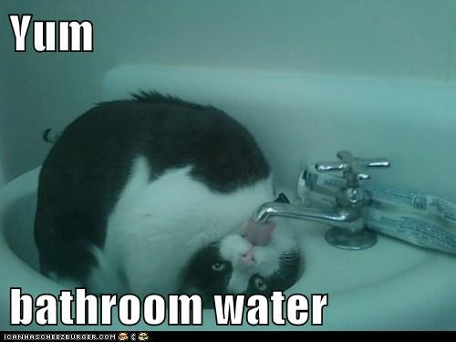 Yum  bathroom water