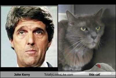 John Kerry Totally Looks Like This Cat