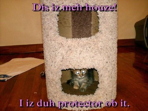 Dis iz meh houze!  I iz duh protector ob it.