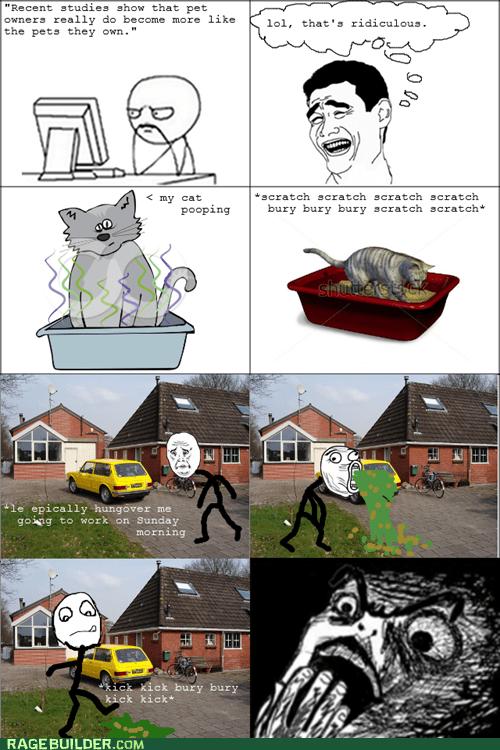 litterbox,puke,vomit,cat,yao ming,hangover
