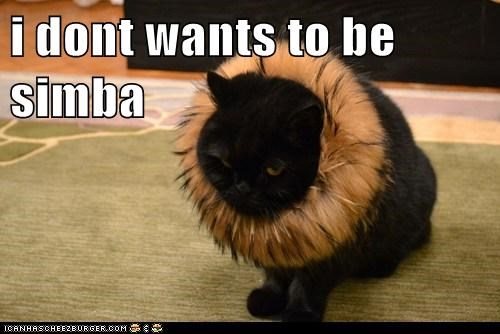 i dont wants to be simba