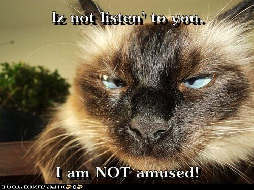 Iz not listen' to you.  I am NOT amused!