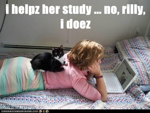 i helpz her study ... no, rilly, i doez