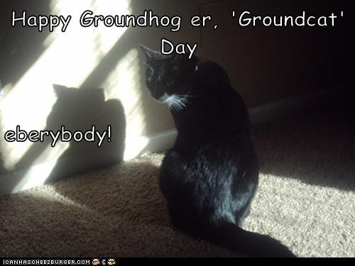 Happy Groundhog er, 'Groundcat' Day eberybody!