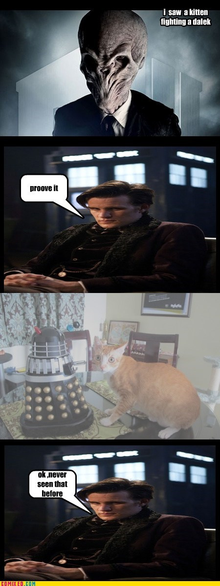 kitteh vs dalek