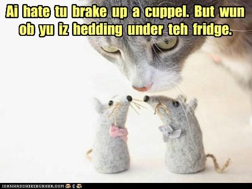 Ai  hate  tu  brake  up  a  cuppel.  But  wun  ob  yu  iz  hedding  under  teh  fridge.