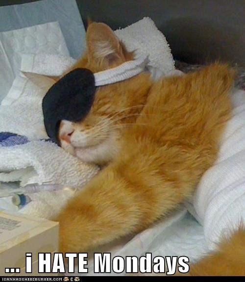 ... i HATE Mondays