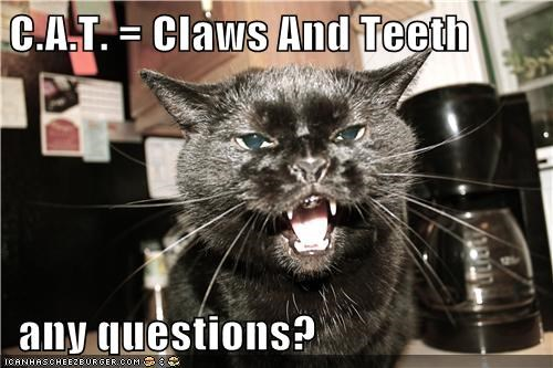 C.A.T. = Claws And Teeth     any questions?