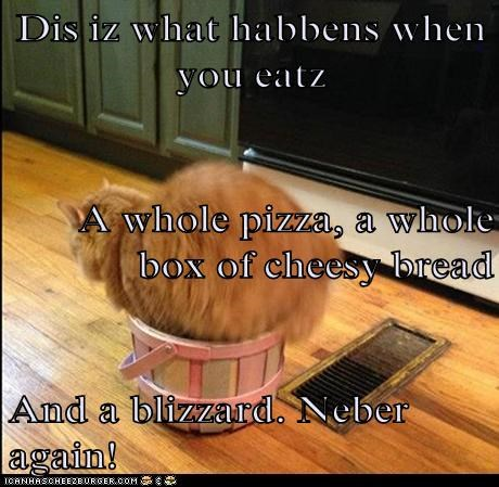 Dis iz what habbens when you eatz A whole pizza, a whole box of cheesy bread And a blizzard. Neber again!