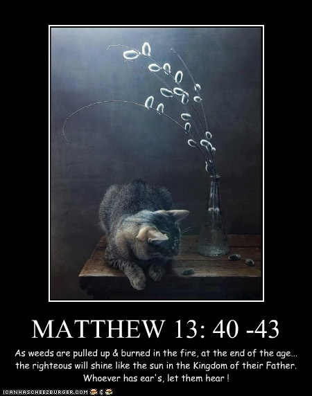 MATTHEW 13: 40 -43