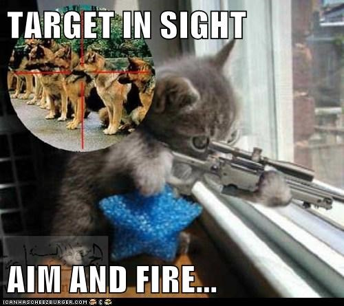 TARGET IN SIGHT  AIM AND FIRE...