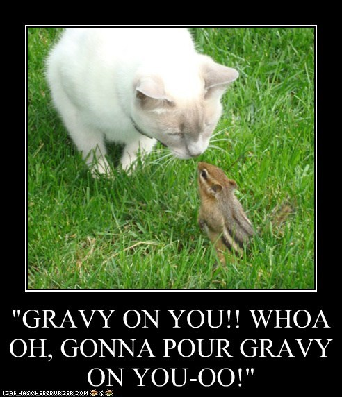 """GRAVY ON YOU!! WHOA OH, GONNA POUR GRAVY ON YOU-OO!"""