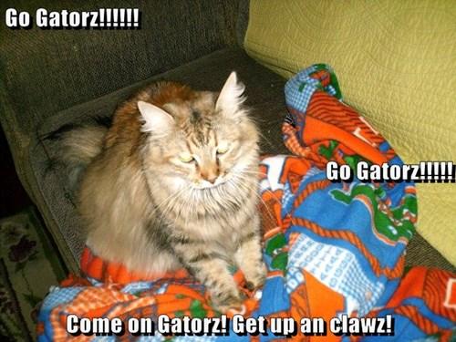 Go Gatorz!!!!!! Go Gatorz!!!!! Come on Gatorz! Get up an clawz!