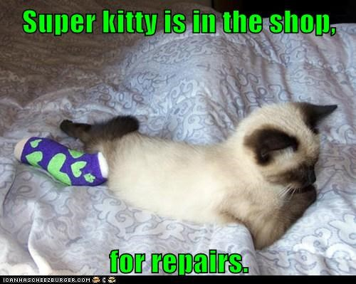Super kitty is in the shop,  for repairs.