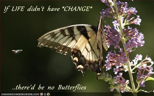 If  LIFE  didn't  have *CHANGE*        ..there'd  be  no  Butterflies