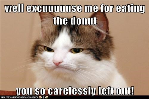 well excuuuuuse me for eating the donut    you so carelessly left out!