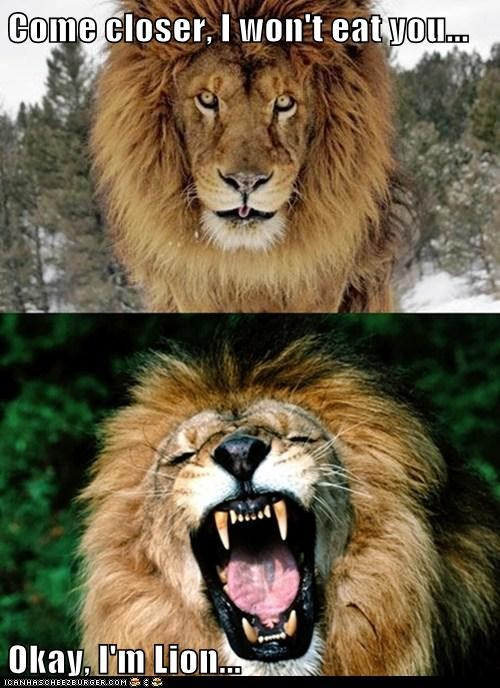 Come closer, I won't eat you...  Okay, I'm Lion...