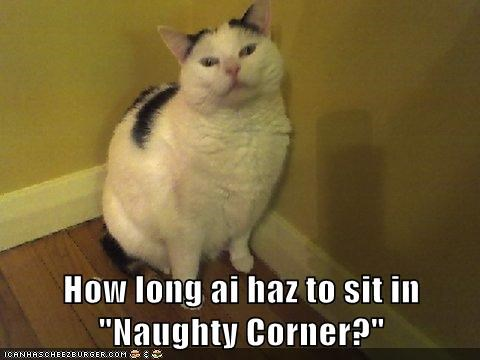 "How long ai haz to sit in ""Naughty Corner?"""