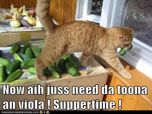 Now aih juss need da toona an viola ! Suppertime !