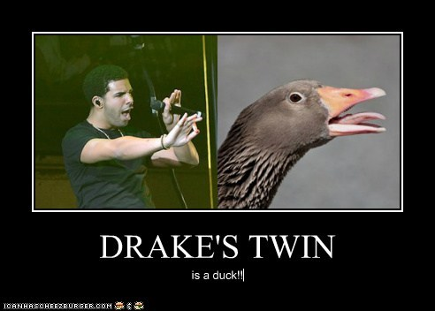 DRAKE'S TWIN