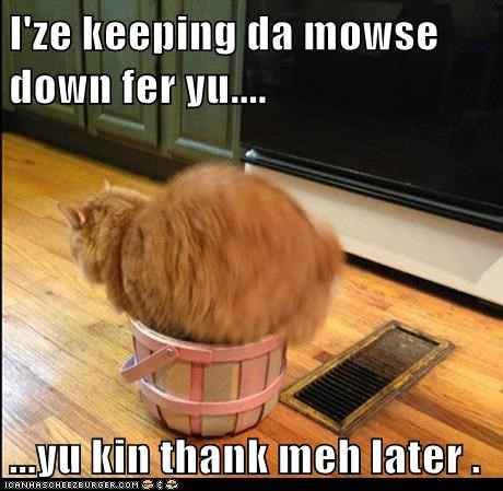 I'ze keeping da mowse down fer yu....  ...yu kin thank meh later .