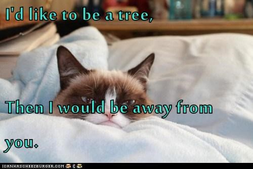 I'd like to be a tree,  Then I would be away from you.