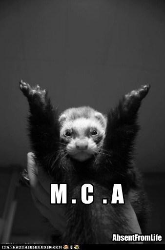 M . C  . A
