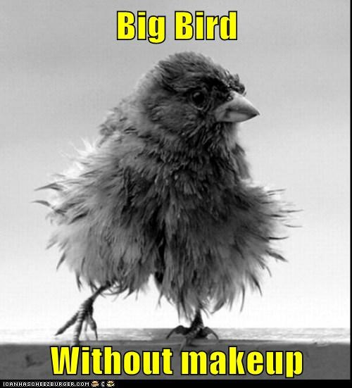 Big Bird  Without makeup