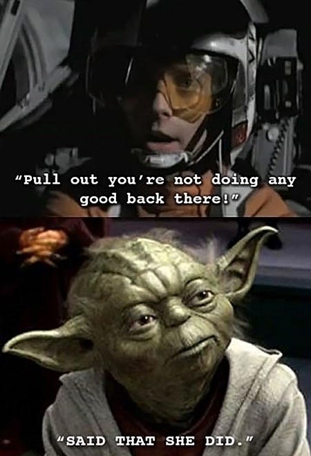 Wise Yoda Is
