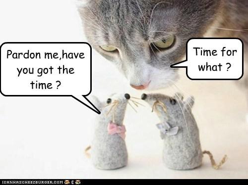 Pardon me,have you got the time ?
