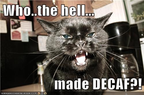 Who..the hell...  made DECAF?!