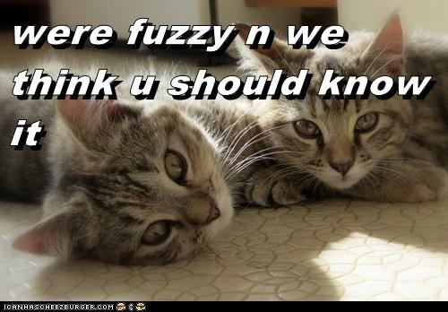 were fuzzy n we think u should know it