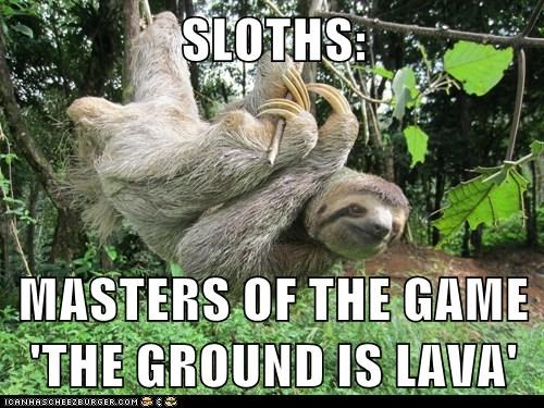 SLOTHS:  MASTERS OF THE GAME 'THE GROUND IS LAVA'