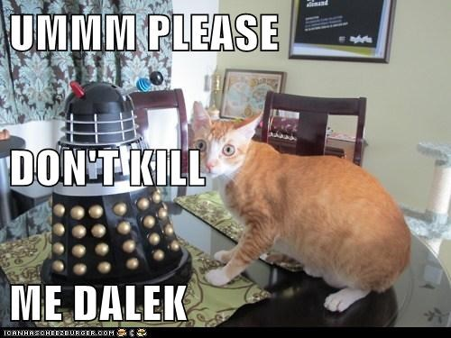 UMMM PLEASE DON'T KILL ME DALEK
