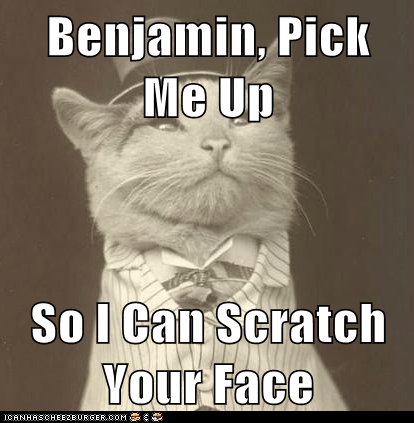 Benjamin, Pick Me Up   So I Can Scratch Your Face