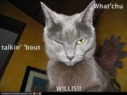 What'chu talkin' 'bout                          WILLIS!!