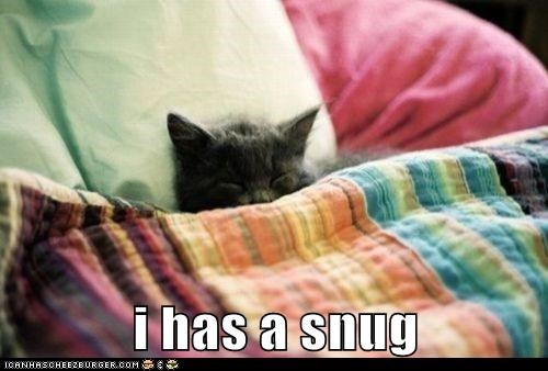 Snug as a Bug in a Rug!