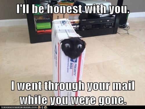 I'll be honest with you.  I went through your mail while you were gone.