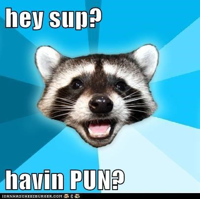 hey sup?  havin PUN?