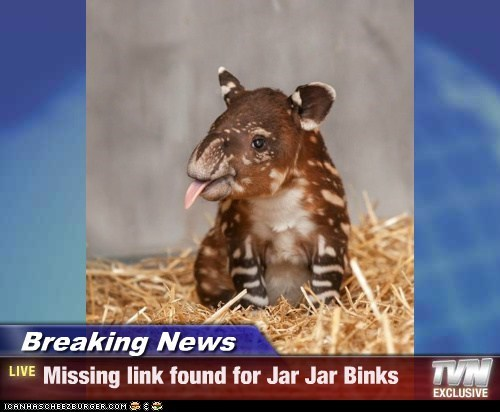 Breaking News - Missing link found for Jar Jar Binks