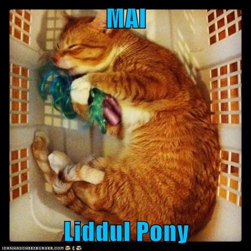 MAI  Liddul Pony